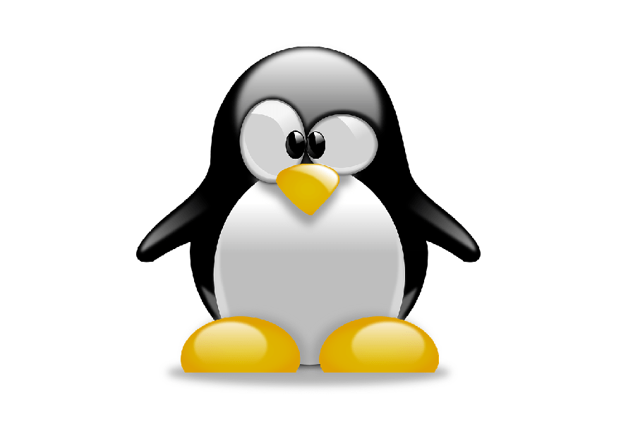 The Geeks managed cloud backup is compatible with Linux